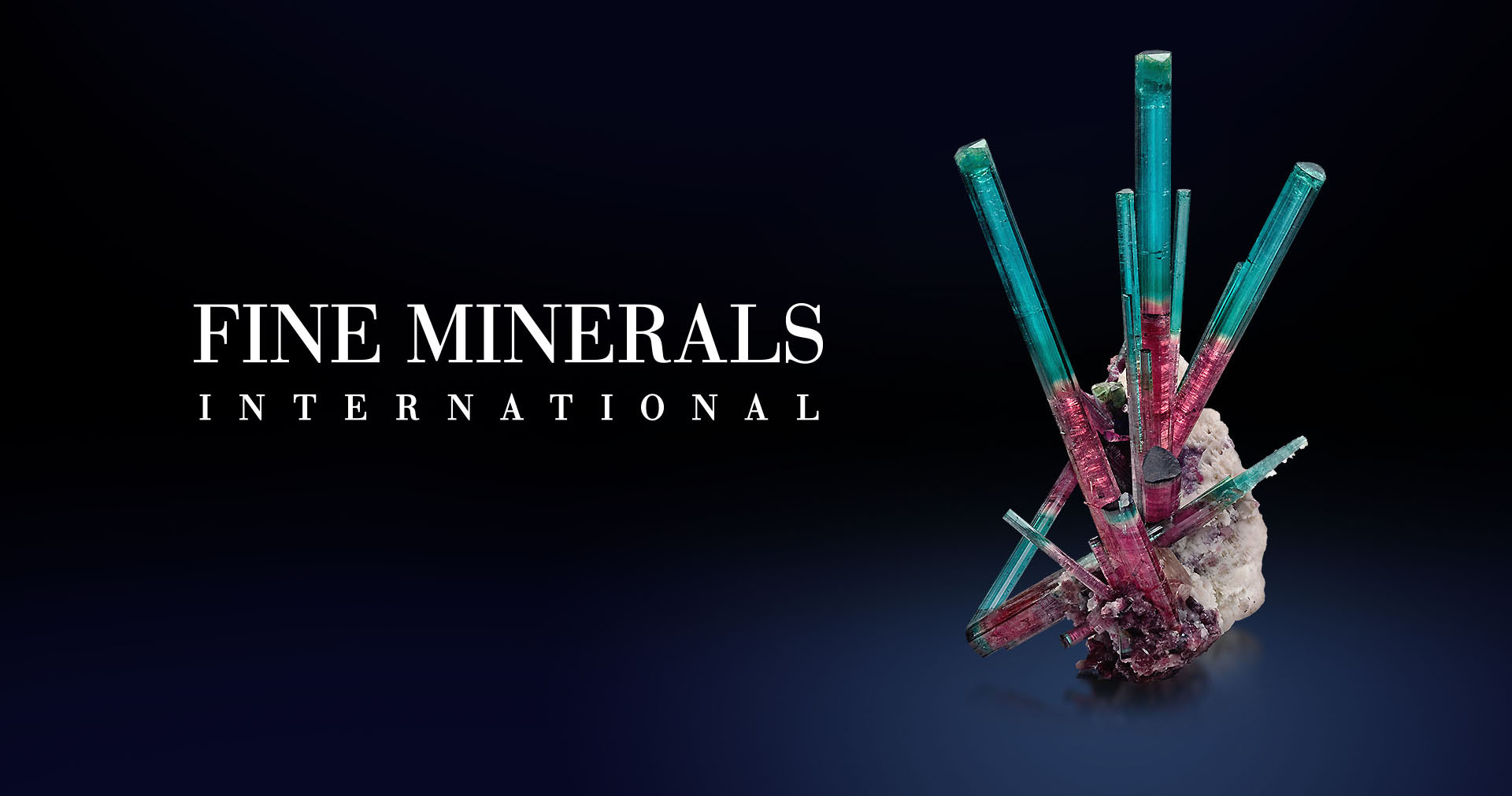 Bi-Color Steel - tourmaline from Pederniera, Brazil
